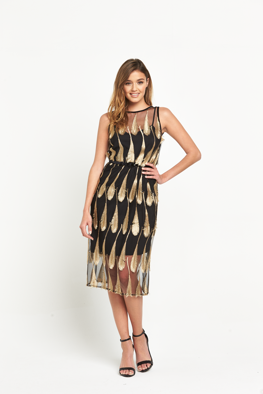 Warehouse Feather Jacquard Dress